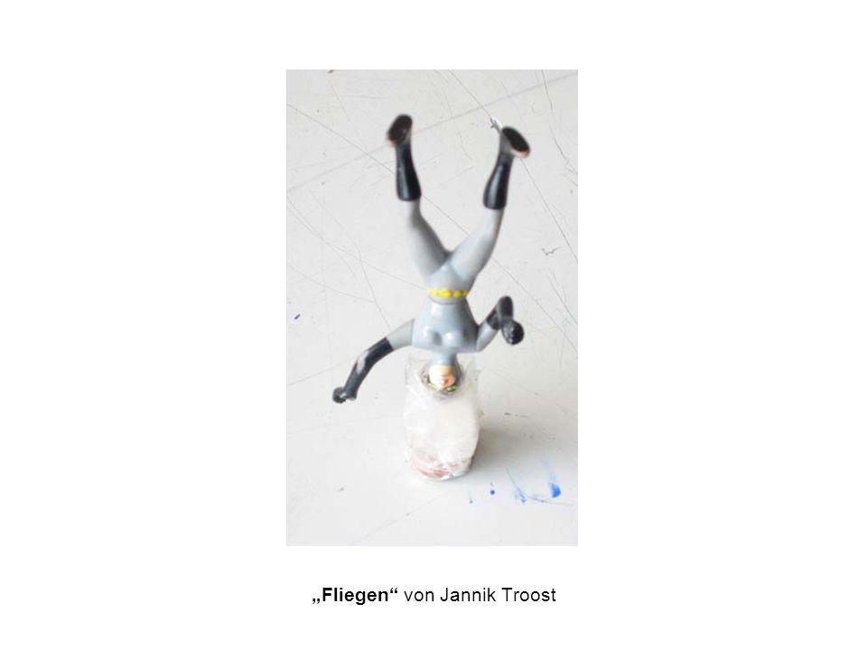 """""""Fliegen von Jannik Troost"""
