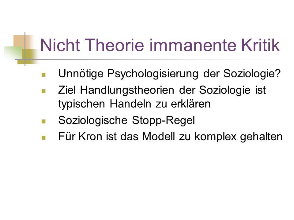 Nicht Theorie immanente Kritik