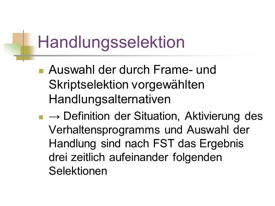 Handlungsselektion Auswahl der durch Frame- und Skriptselektion vorgewählten Handlungsalternativen.