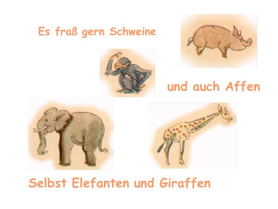 Selbst Elefanten und Giraffen