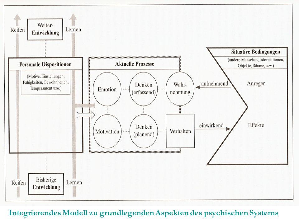 Integrierendes Modell zu grundlegenden Aspekten des psychischen Systems