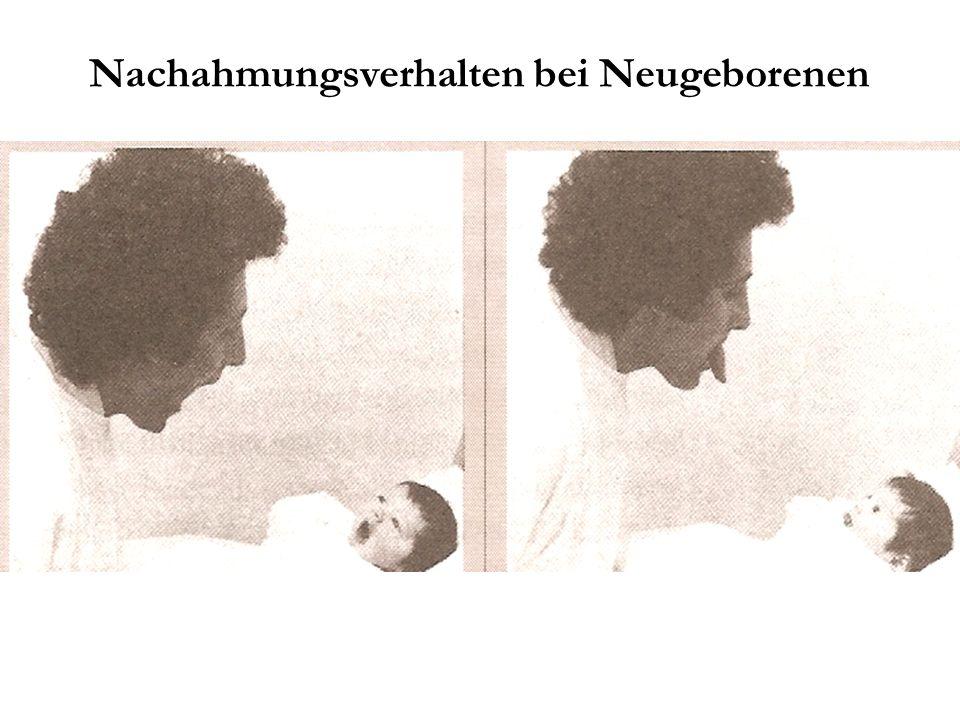 Nachahmungsverhalten bei Neugeborenen
