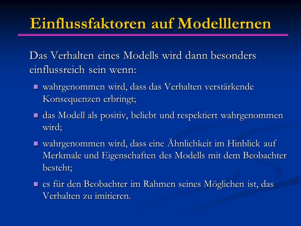 Einflussfaktoren auf Modelllernen