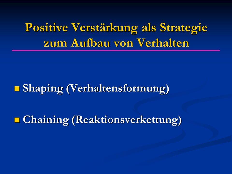 Positive Verstärkung als Strategie zum Aufbau von Verhalten