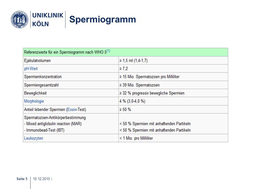 Spermiogramm 1