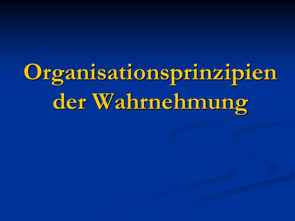 Organisationsprinzipien der Wahrnehmung