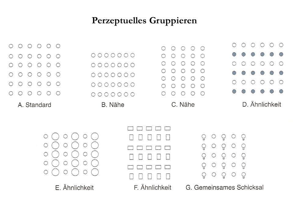 Perzeptuelles Gruppieren