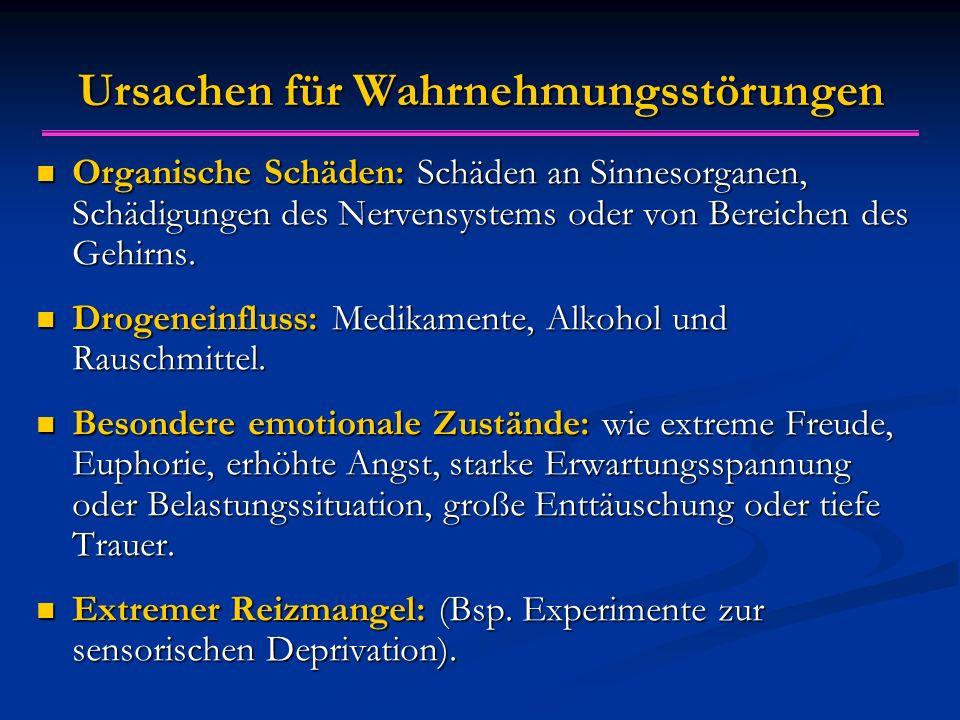 Ursachen für Wahrnehmungsstörungen