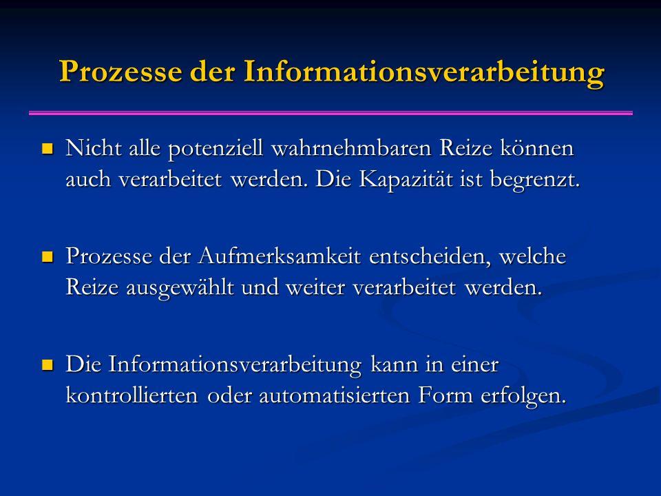 Prozesse der Informationsverarbeitung