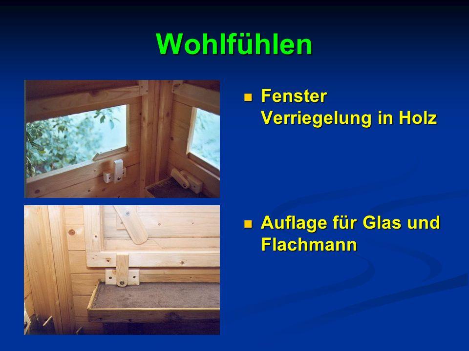 Wohlfühlen Fenster Verriegelung in Holz Auflage für Glas und Flachmann