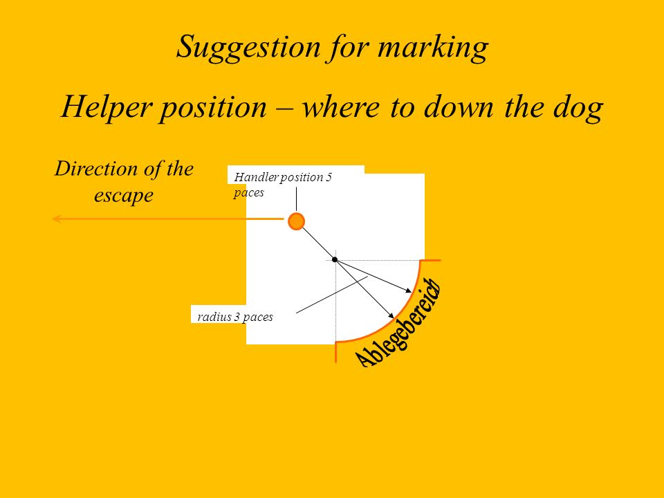 Suggestion for marking Helper position – where to down the dog
