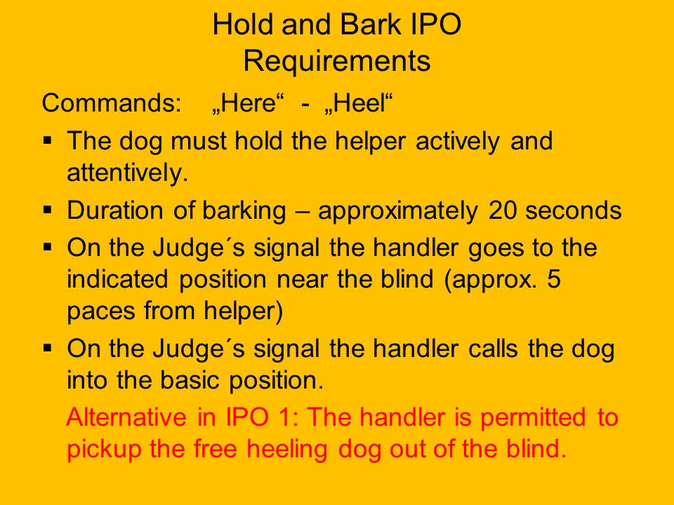Hold and Bark IPO Requirements
