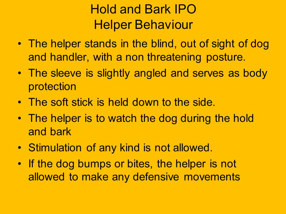 Hold and Bark IPO Helper Behaviour