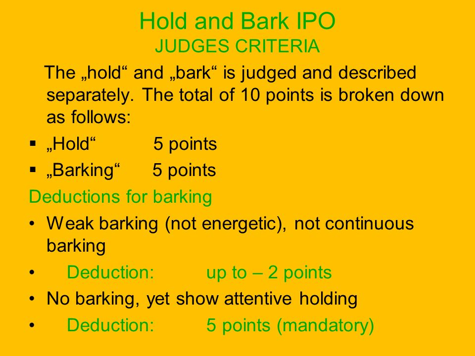 Hold and Bark IPO JUDGES CRITERIA