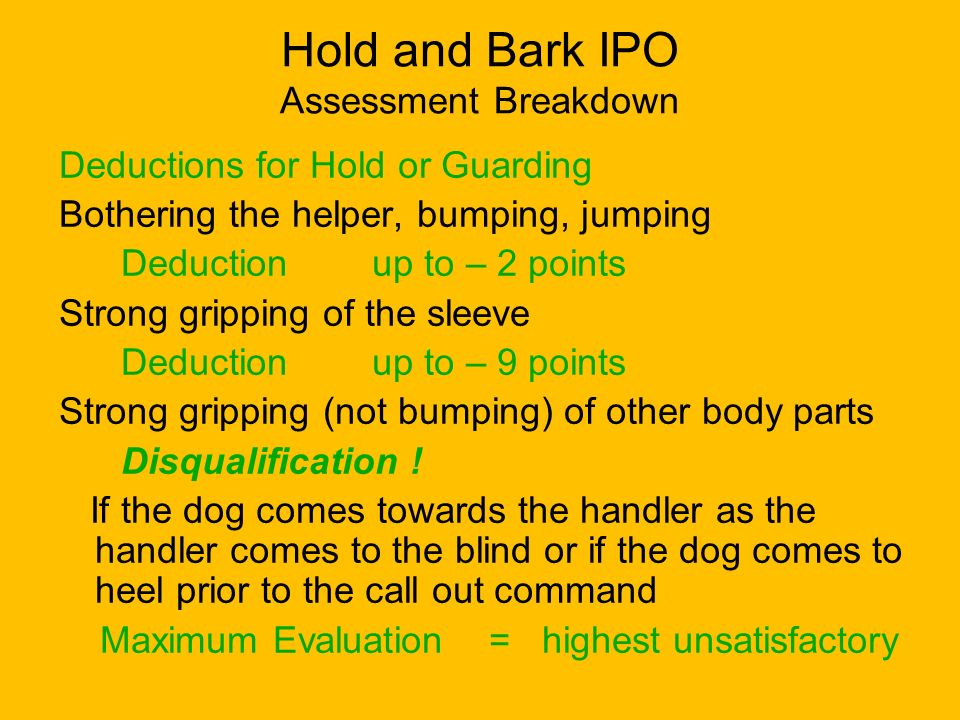Hold and Bark IPO Assessment Breakdown