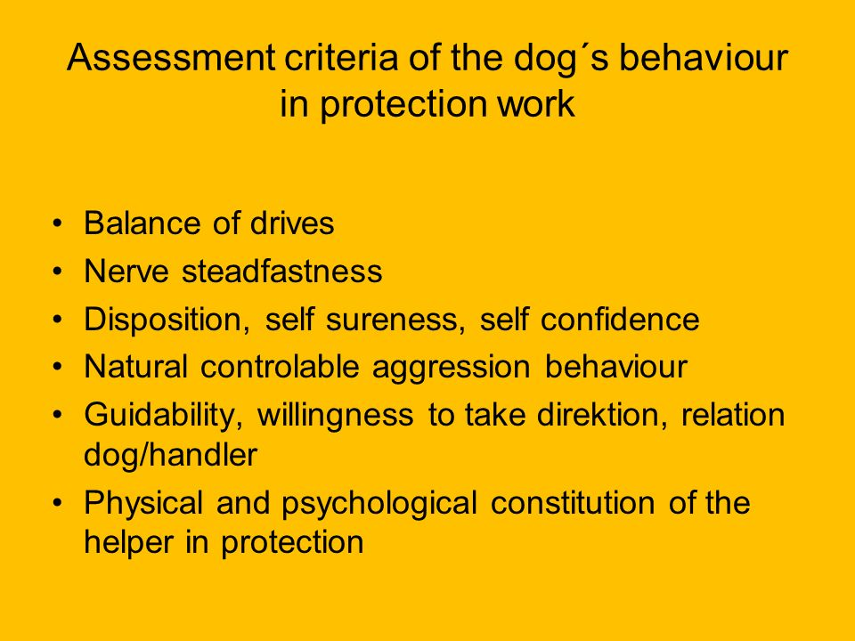 Assessment criteria of the dog´s behaviour in protection work