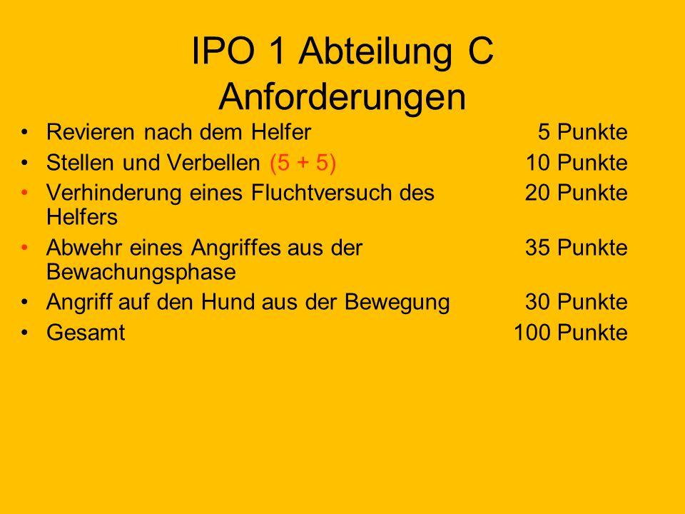 IPO 1 Abteilung C Anforderungen