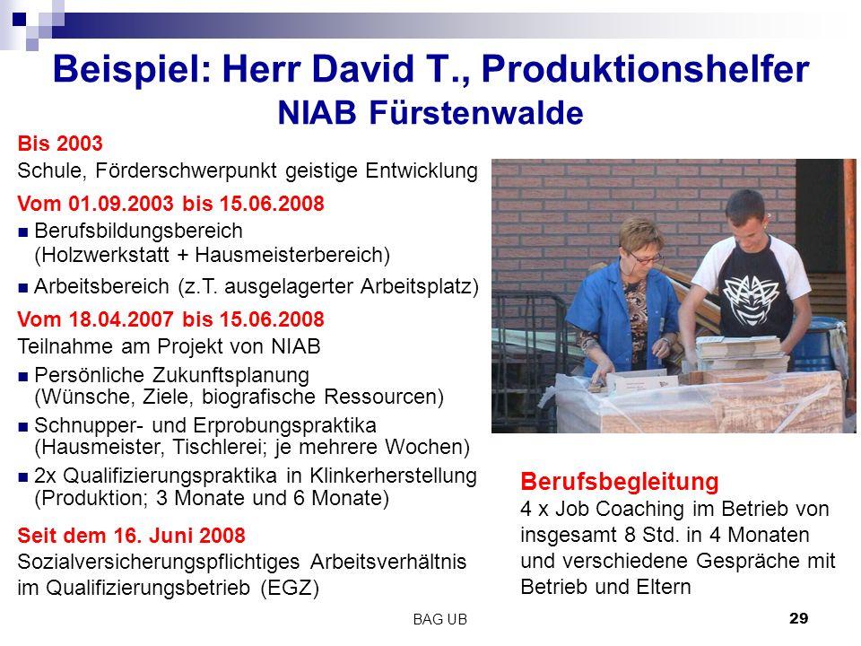 Beispiel: Herr David T., Produktionshelfer NIAB Fürstenwalde