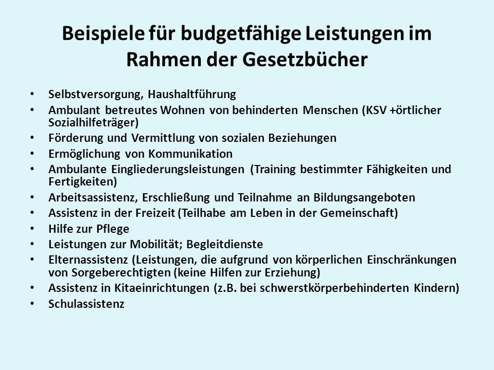 Beispiele für budgetfähige Leistungen im Rahmen der Gesetzbücher
