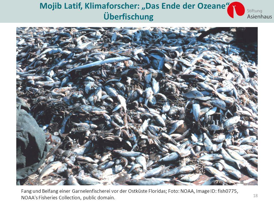 """Mojib Latif, Klimaforscher: """"Das Ende der Ozeane """""""