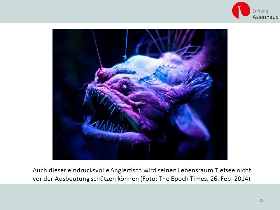 Auch dieser eindrucksvolle Anglerfisch wird seinen Lebensraum Tiefsee nicht vor der Ausbeutung schützen können (Foto: The Epoch Times, 26.