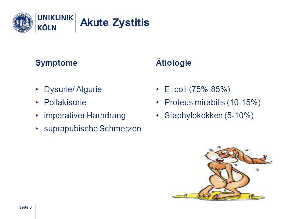 Akute Zystitis Symptome Dysurie/ Algurie Pollakisurie