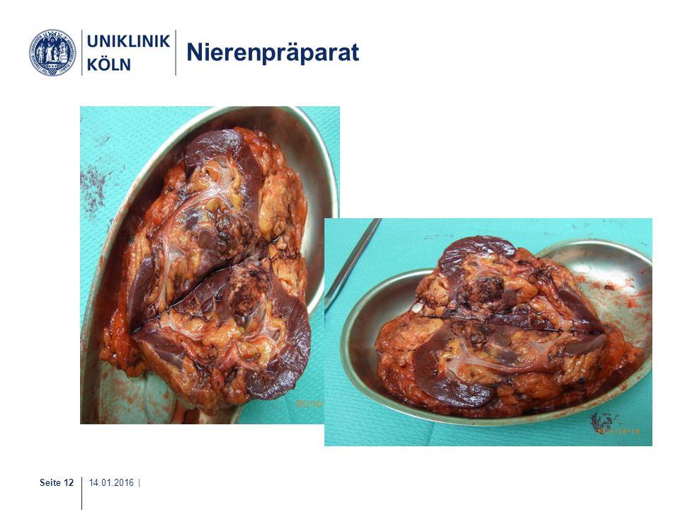 Nierenpräparat 15-20