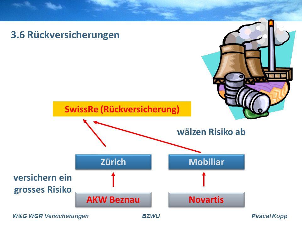 SwissRe (Rückversicherung) versichern ein grosses Risiko