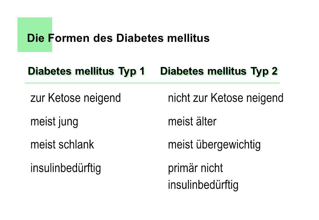Die Formen des Diabetes mellitus