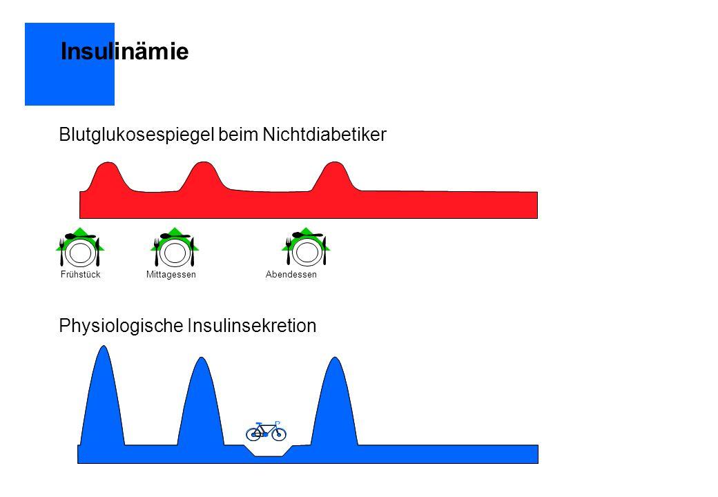 Insulinämie Blutglukosespiegel beim Nichtdiabetiker