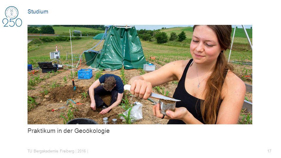 Praktikum in der Geoökologie