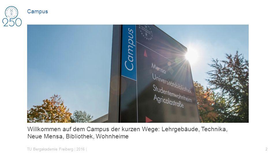 Campus Campus der kurzen Wege – Lehrgebäude, Hörsäle, Seminarräume, Technika, Wohnheime, Bibliothek, Mensa.