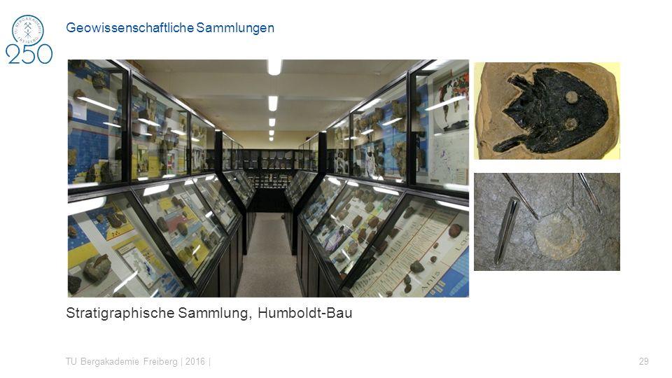 Geowissenschaftliche Sammlungen