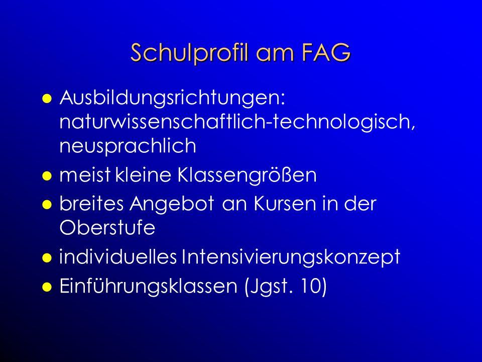 Schulprofil am FAG Ausbildungsrichtungen: naturwissenschaftlich-technologisch, neusprachlich. meist kleine Klassengrößen.
