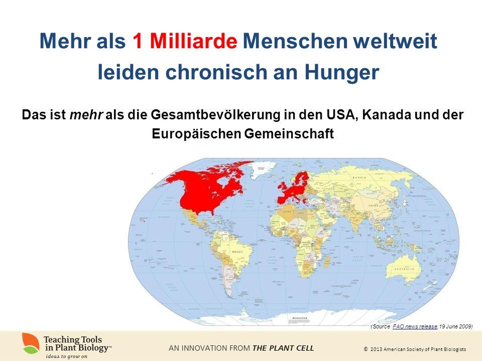 Mehr als 1 Milliarde Menschen weltweit leiden chronisch an Hunger