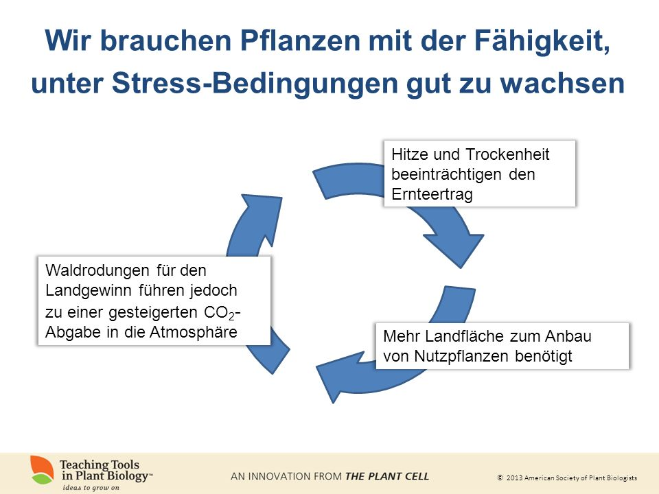 Wir brauchen Pflanzen mit der Fähigkeit, unter Stress-Bedingungen gut zu wachsen