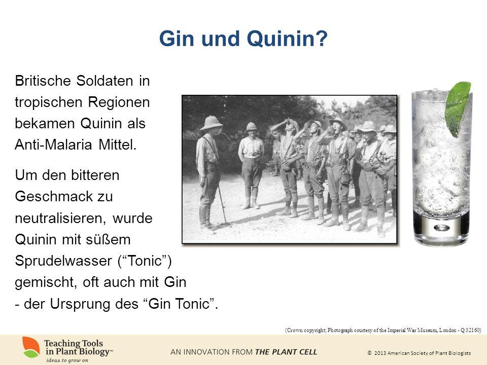 Gin und Quinin Britische Soldaten in tropischen Regionen