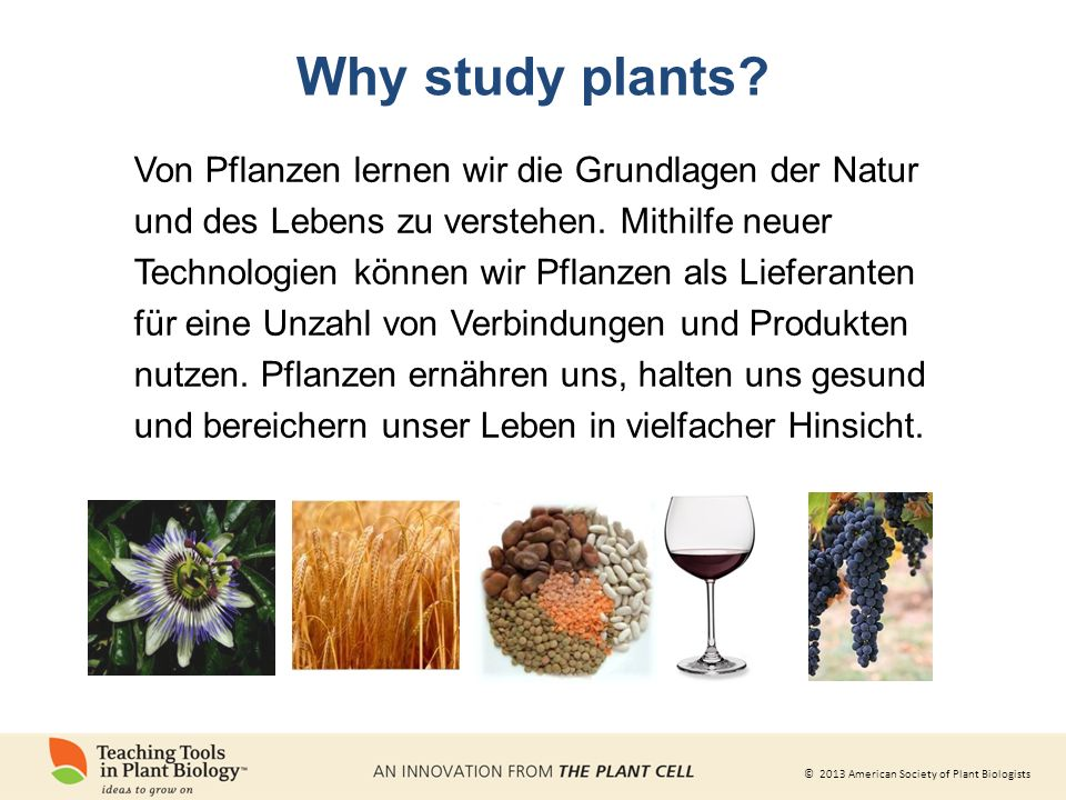 Why study plants