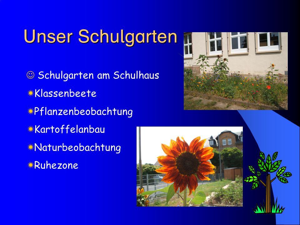 Unser Schulgarten Schulgarten am Schulhaus Klassenbeete