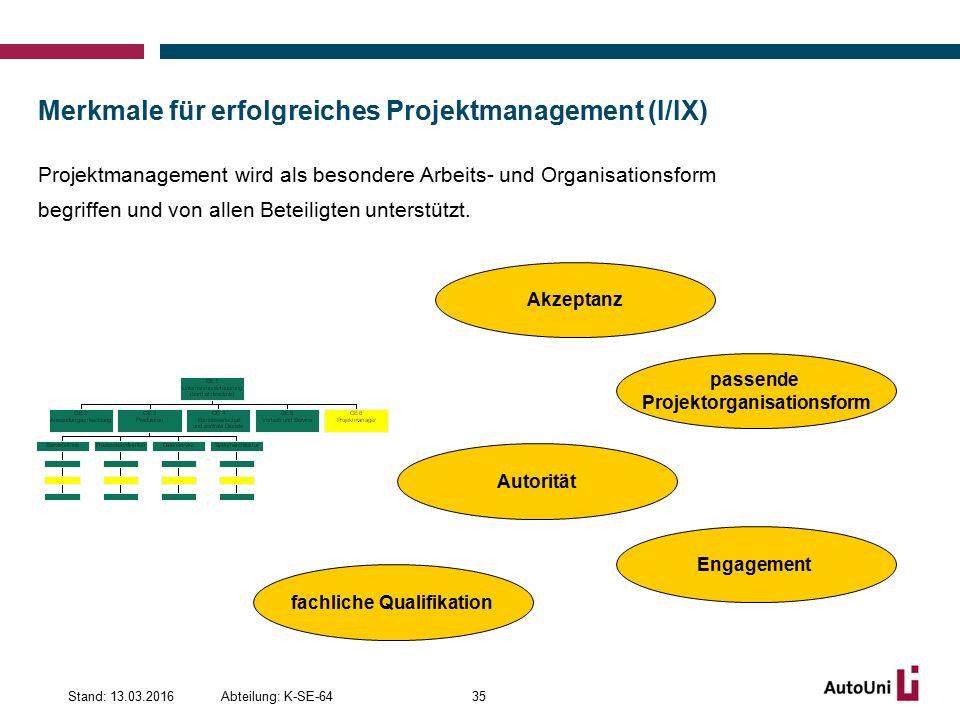Merkmale für erfolgreiches Projektmanagement (I/IX)