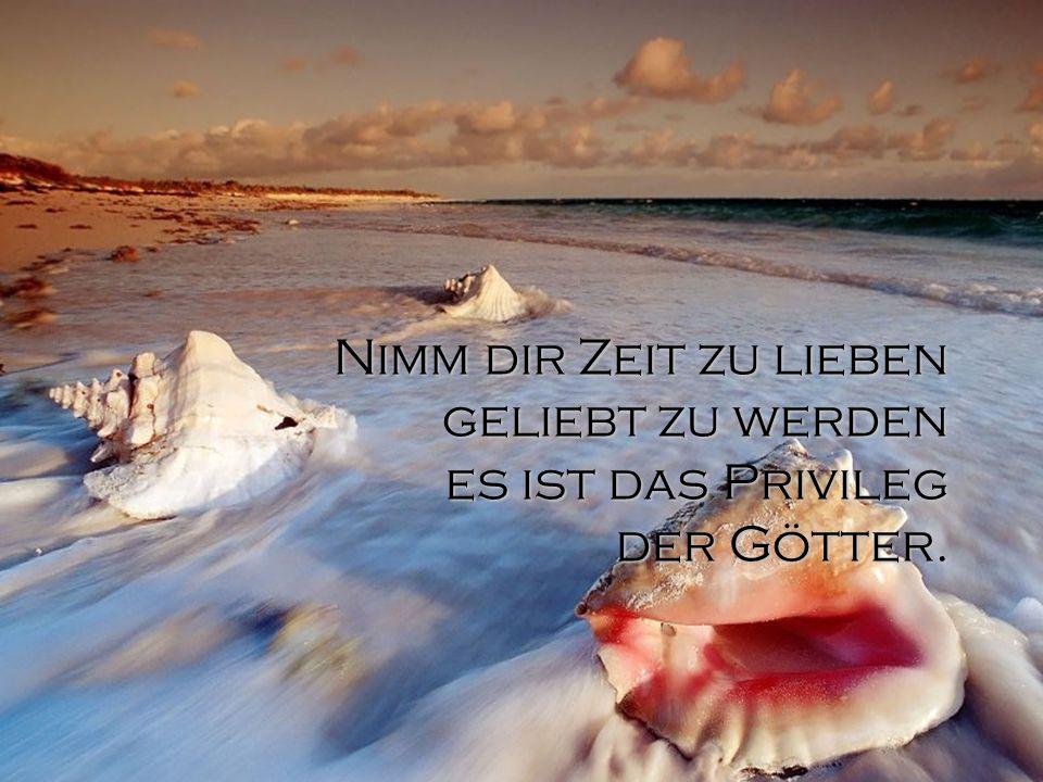 Nimm dir Zeit zu lieben geliebt zu werden es ist das Privileg der Götter.