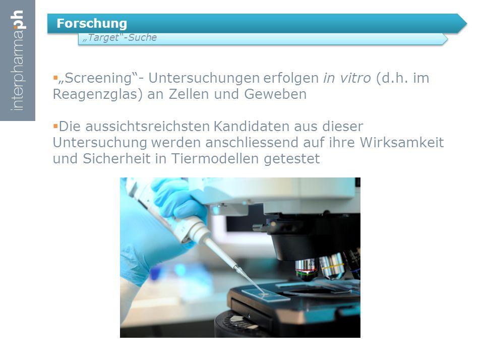 """Forschung """"Target -Suche. """"Screening - Untersuchungen erfolgen in vitro (d.h. im Reagenzglas) an Zellen und Geweben."""