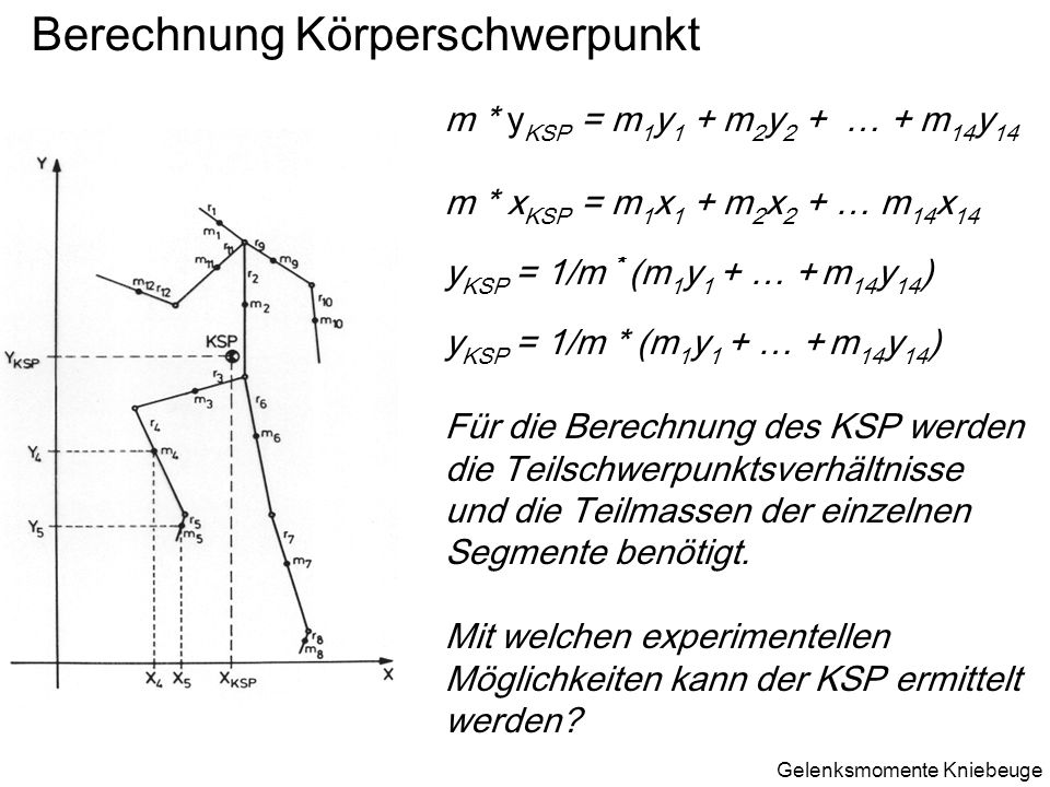 Berechnung Körperschwerpunkt