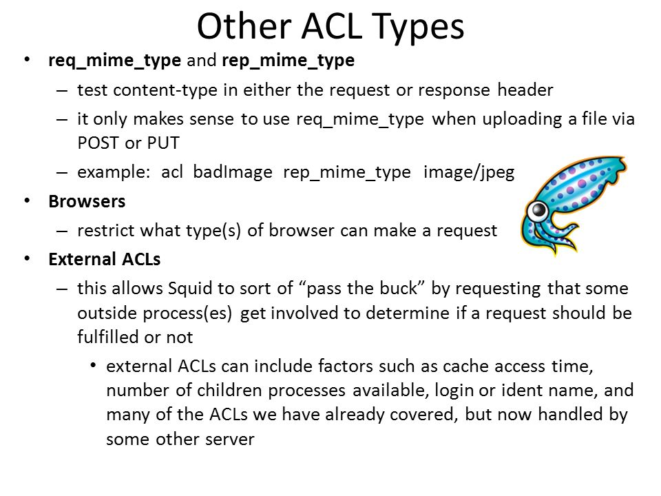 Other ACL Types req_mime_type and rep_mime_type
