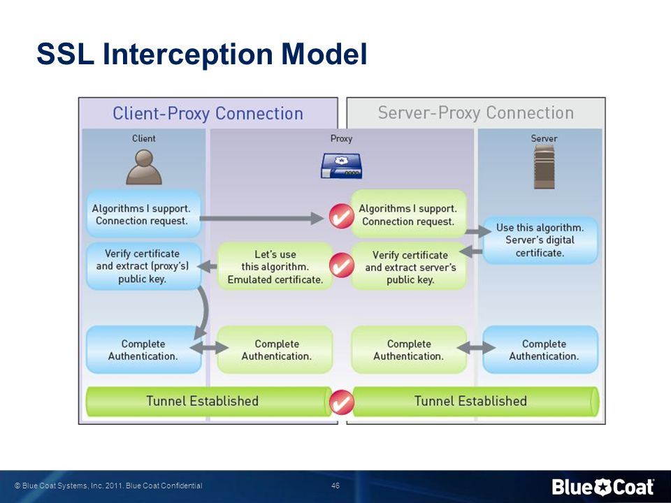 SSL Interception Model