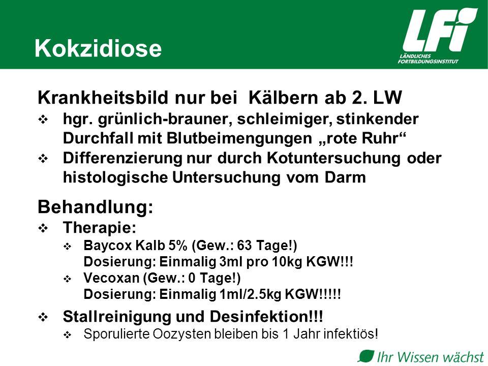 Kokzidiose Krankheitsbild nur bei Kälbern ab 2. LW Behandlung: