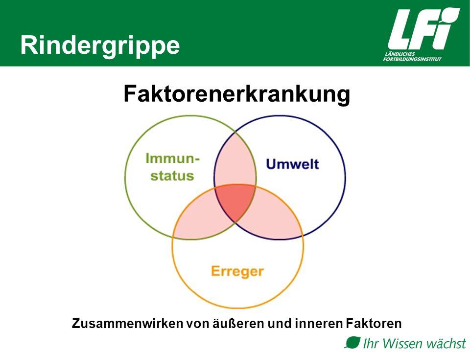 Zusammenwirken von äußeren und inneren Faktoren