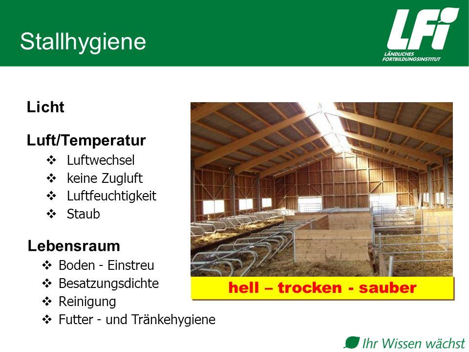 Stallhygiene Licht Luft/Temperatur Lebensraum hell – trocken - sauber