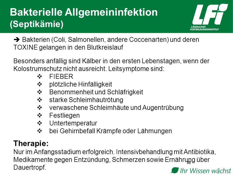 Bakterielle Allgemeininfektion (Septikämie)