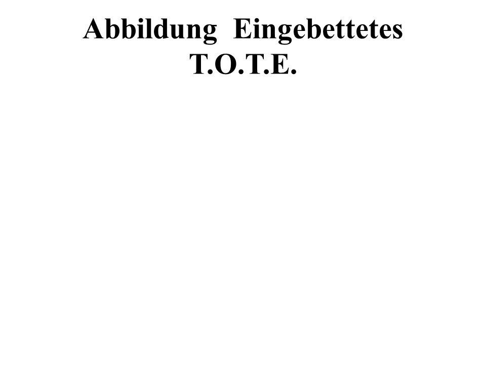 Abbildung Eingebettetes T.O.T.E.
